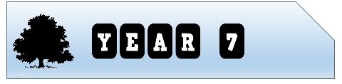 year-7-blog-banner